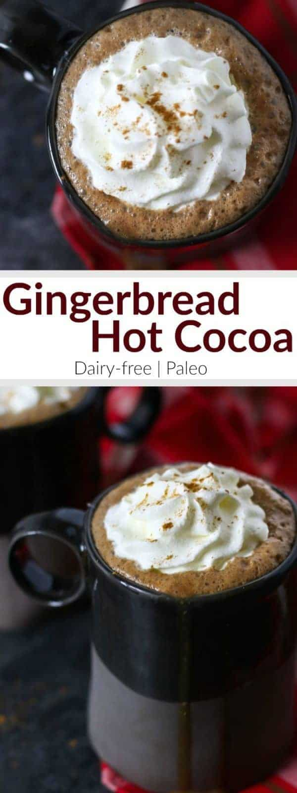 Dairy-free Gingerbread Hot Cocoa | In this Dairy-free Gingerbread Hot Cocoa that's sweetened with honey and molasses and spiced just right you get it all - cookies and cocoa - in one soul-warming mug. | dairy-free holiday drinks | dairy-free gingerbread recipes | dairy-free christmas recipes | dairy-free hot cocoa | paleo holiday drinks | paleo gingerbread recipes | paleo christmas recipes | paleo holiday drinks || The Real Food Dietitians #paleodrinks #paleochristmas #dairyfreeholiday #dairyfreehotcocoa