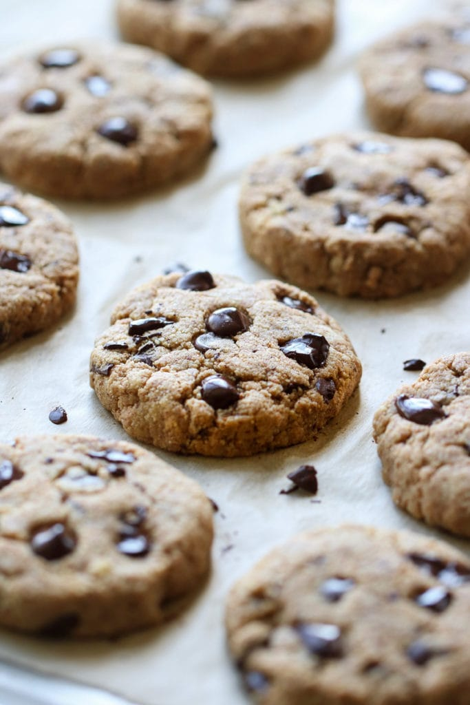 Freshly baked Paleo Chocolate Chip Cookies on a baking sheet lined with parchment paper.