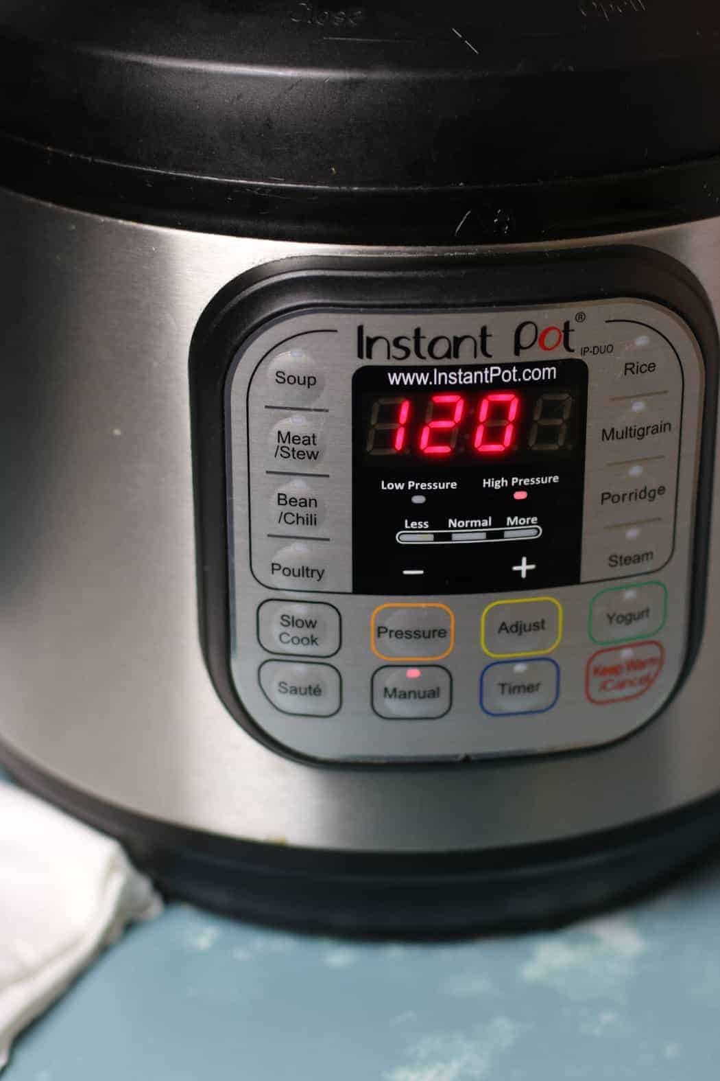 closeup on an instant pot