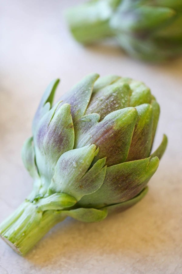 One bright green artichoke laying on it's side with white droplets on the petals.