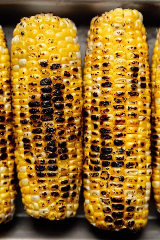 Lightly charred corn on the cob in a metal baking dish.